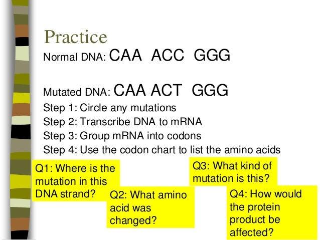 Ue Worksheets Excel Point Mutations Silent Mutations Area Of Complex Figures Worksheet Word with Worksheets For Nursery Pdf  Estimation Word Problems Worksheets Excel