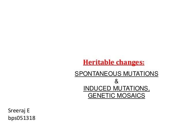 Heritable changes:  SPONTANEOUS MUTATIONS  &  INDUCED MUTATIONS,  GENETIC MOSAICS  Sreeraj E  bps051318