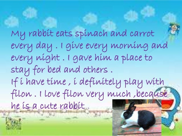 My rabbit eats spinach and carrot every day . I give every morning and every night . I gave him a place to stay for bed an...