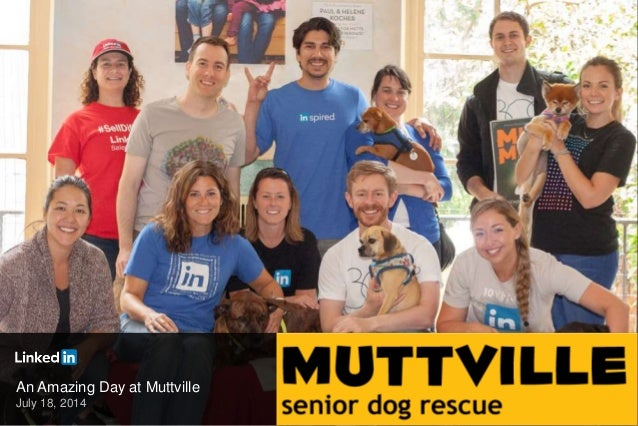 An Amazing Day at Muttville July 18, 2014