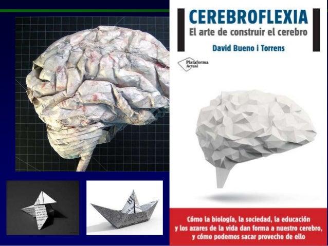 Resultado de imagem para David Bueno cerebroflexia