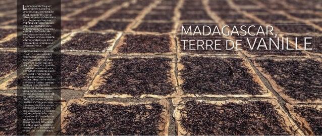 """La liane de vanille """"fragrans"""", qu'on appelle aujourd'hui vanille Bourbon a été introduite à Madagascar en 1870. Elle ne d..."""
