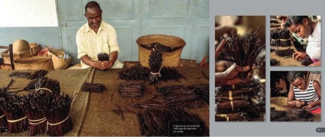 Préparation artisanale et calibrage des gousses de vanille. 5756
