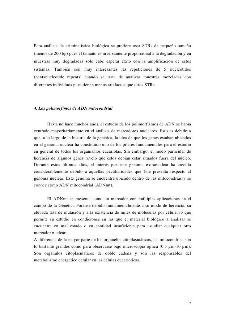 Para análisis de criminalística biológica se prefiere usar STRs de pequeño tamaño(menos de 200 bp) pues el tamaño es inver...