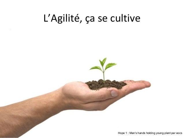 L'Agilité, ça se cultive  Hope 1 : Man's hands holding young plant par eocs