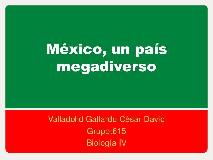 México, un país megadiversoValladolid Gallardo César David           Grupo:615           Biología IV