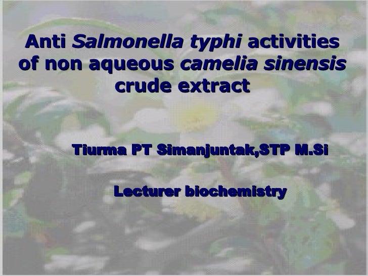 Anti  Salmonella typhi  activities of non aqueous  camelia sinensis  crude extract Tiurma PT Simanjuntak,STP M.Si Lecturer...