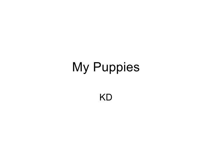 My Puppies KD