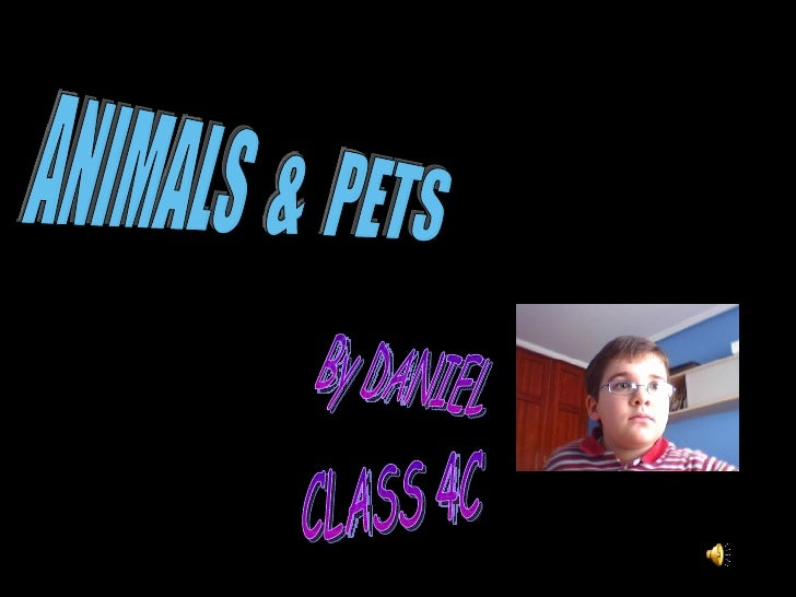 ANIMALS  &  PETS By DANIEL CLASS 4C