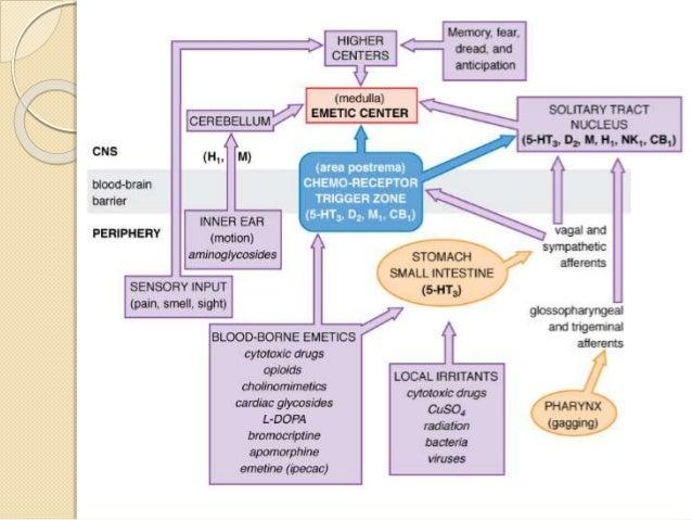 Screening of anti-emetic drugs