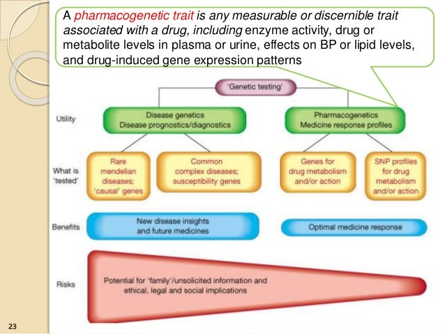 23 A pharmacogenetic trait is any measurable or discernible trait associated with a drug, including enzyme activity, drug ...
