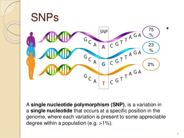 SNPs 5 A single nucleotide polymorphism (SNP), is a variation in a single nucleotide that occurs at a specific position in...