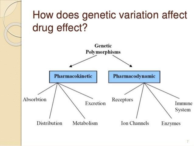 How does genetic variation affect drug effect? 7