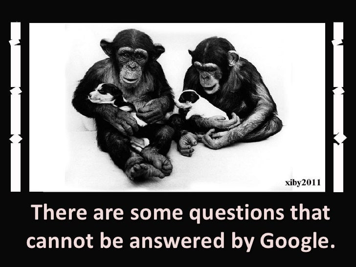 Questions That Cannot Be Answered Funny