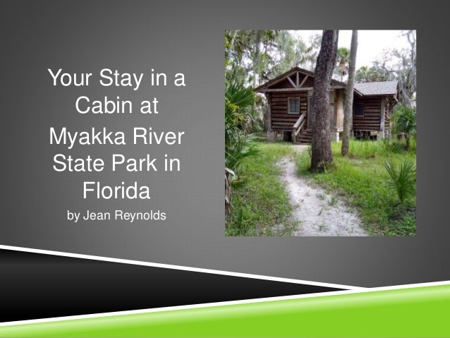Your Stay in a Cabin at Myakka River State Park in Florida by Jean Reynolds