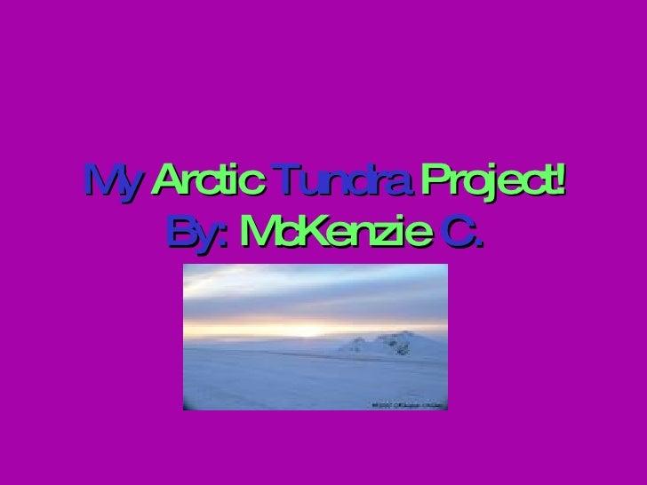 My  Arctic  Tundra  Project! By:  McKenzie  C.
