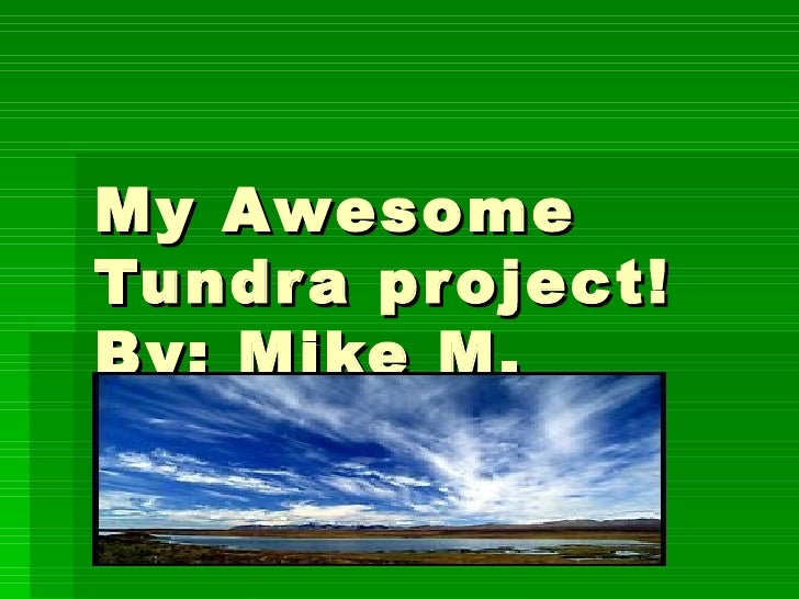 My Awesome Tundra project! By: Mike M.