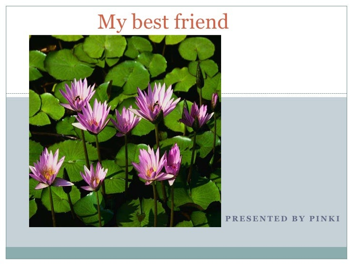 My best friend<br />Presented by Pinki<br />