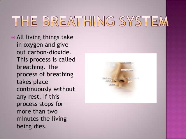  All living things takein oxygen and giveout carbon-dioxide.This process is calledbreathing. Theprocess of breathingtakes...