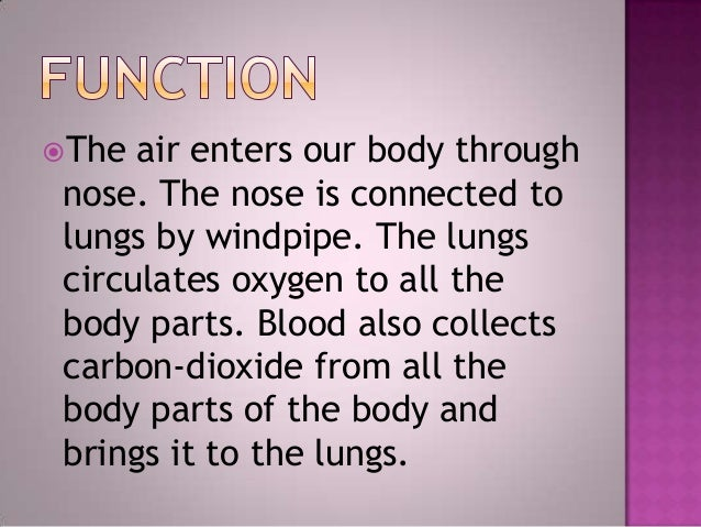 The air enters our body throughnose. The nose is connected tolungs by windpipe. The lungscirculates oxygen to all thebody...