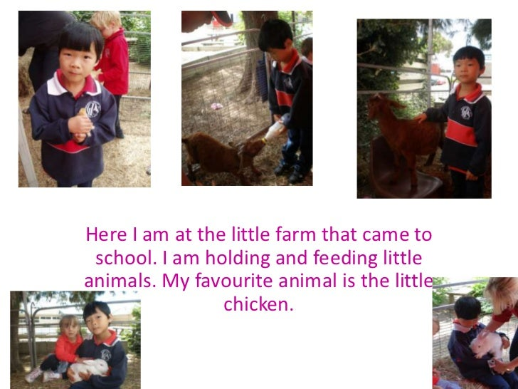 Here I am at the little farm that came to school. I am holding and feeding little animals. My favourite animal is the litt...