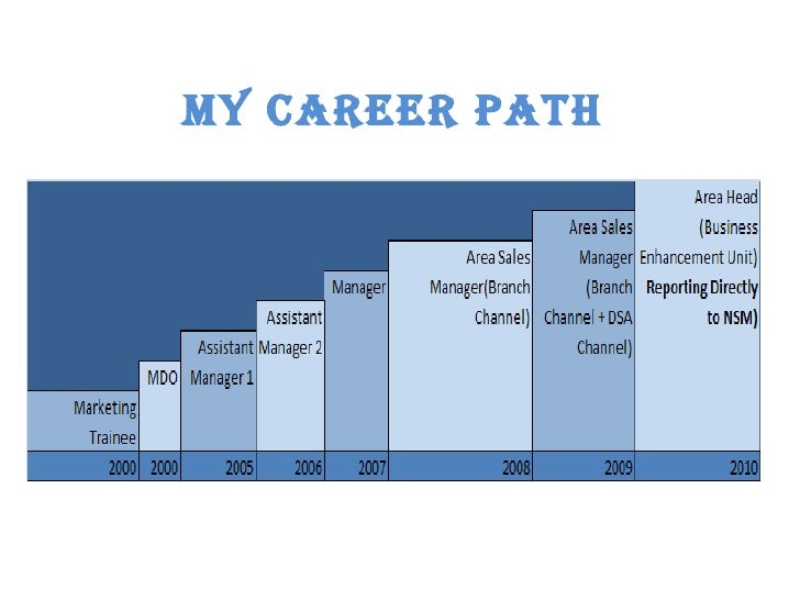 it career path chart