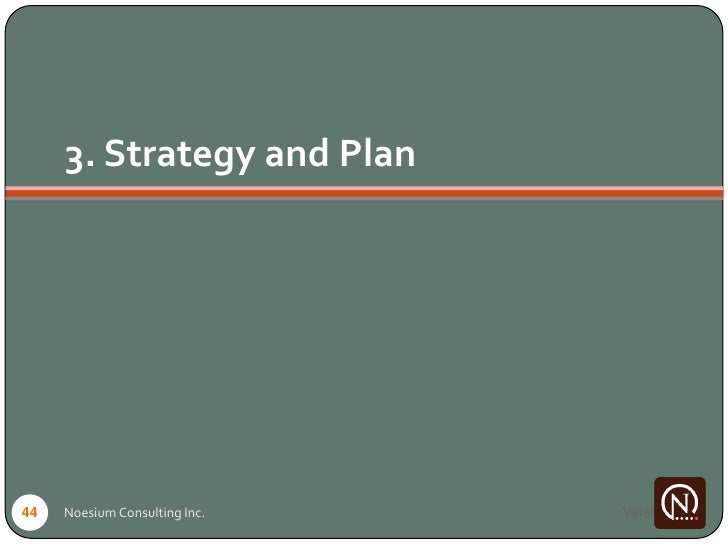 3. Strategy and Plan     44   Noesium Consulting Inc.   Version 1
