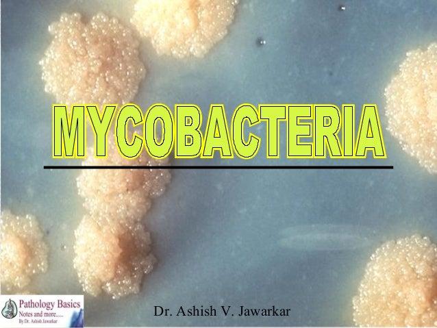 Dr. Ashish V. Jawarkar