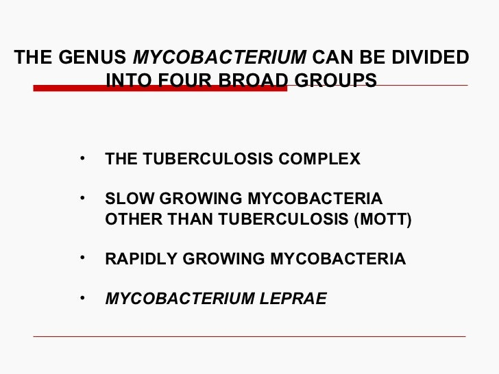 THE GENUS  MYCOBACTERIUM  CAN BE DIVIDED  INTO FOUR BROAD GROUPS <ul><li>THE TUBERCULOSIS COMPLEX </li></ul><ul><li>SLOW G...