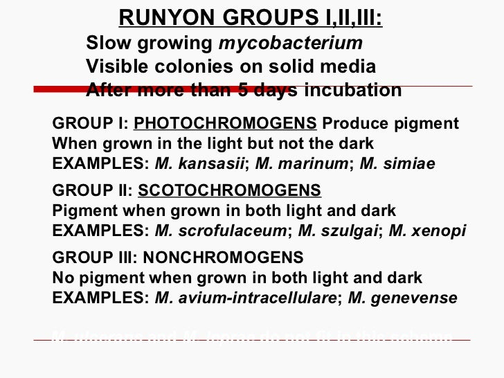 RUNYON GROUPS I,II,III: Slow growing  mycobacterium Visible colonies on solid media After more than 5 days incubation GROU...