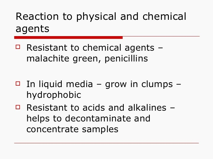 Reaction to physical and chemical agents <ul><li>Resistant to chemical agents – malachite green, penicillins </li></ul><ul...