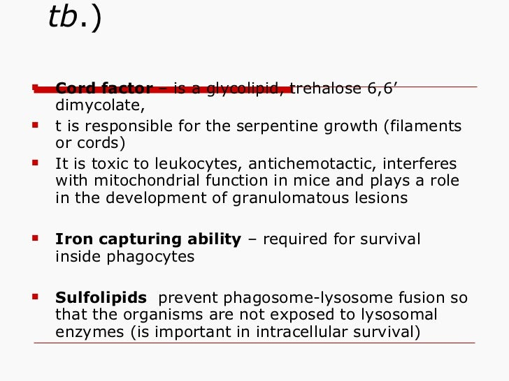 Virulence factors ( M. tb .) <ul><ul><li>Cord factor  – is a glycolipid, trehalose 6,6' dimycolate,  </li></ul></ul><ul><u...