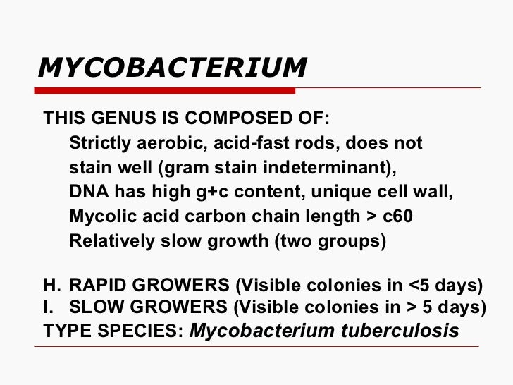 MYCOBACTERIUM <ul><li>THIS GENUS IS COMPOSED OF:  </li></ul><ul><li>Strictly aerobic, acid-fast rods, does not </li></ul><...