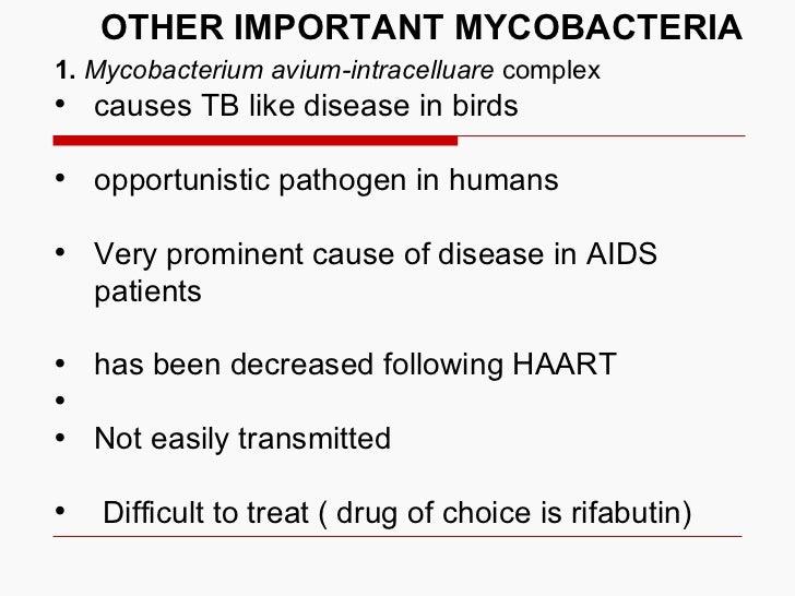 OTHER IMPORTANT MYCOBACTERIA <ul><li>1.   Mycobacterium avium-intracelluare  complex </li></ul><ul><li>causes TB like dise...