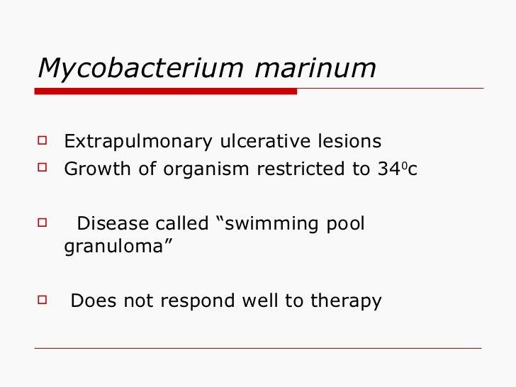 Mycobacterium marinum <ul><li>Extrapulmonary ulcerative lesions </li></ul><ul><li>Growth of organism restricted to 34 0 c ...