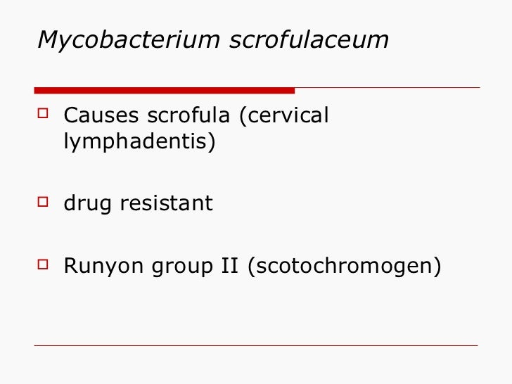 Mycobacterium scrofulaceum <ul><li>Causes scrofula (cervical lymphadentis) </li></ul><ul><li>drug resistant </li></ul><ul>...