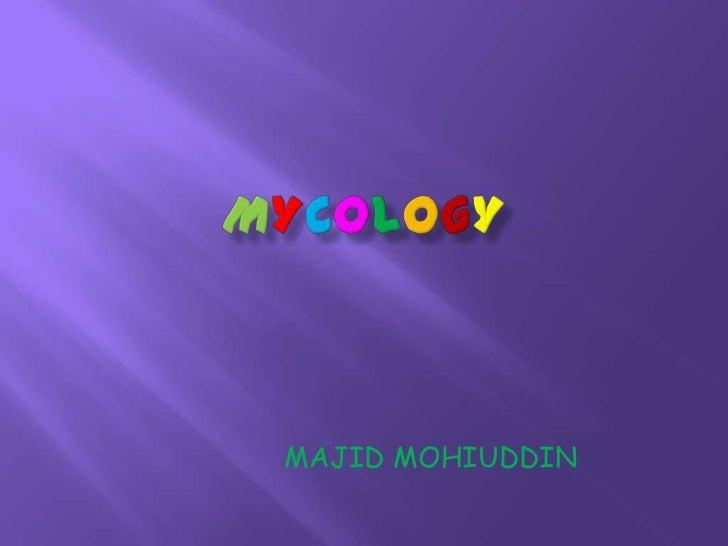 MAJID MOHIUDDIN