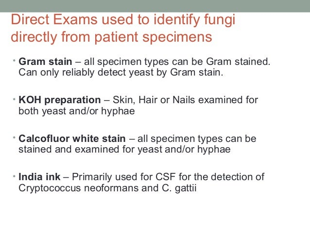 Direct Exams used to identify fungi directly from patient specimens • Gram stain – all specimen types can be Gram stained....