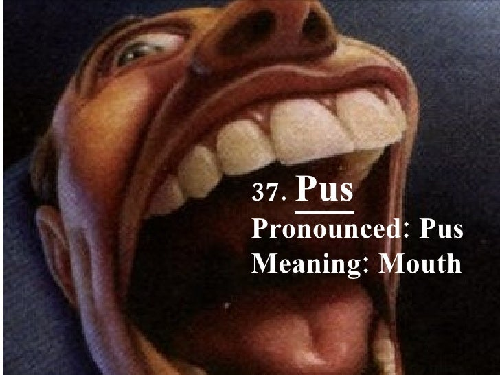37.  Pus Pronounced: Pus Meaning: Mouth