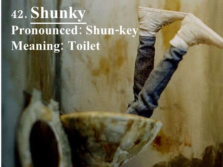 42.  Shunky Pronounced: Shun-key Meaning: Toilet