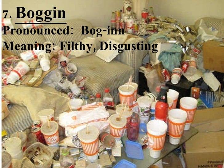 7.  Boggin Pronounced:  Bog-inn Meaning: Filthy, Disgusting