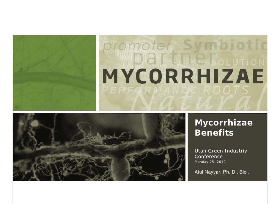 Mycorrhizae Benefits Utah Green Industriy Conference Monday 25, 2010   Atul Nayyar, Ph. D., Biol.