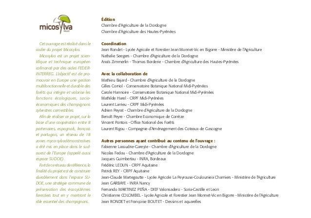 Cet ouvrage est réalisé dans le cadre du projet Micosylva. Micosylva est un projet scien- tifique et technique européen co...