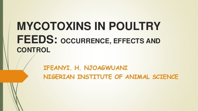 Mycotoxin in poultry feeds ppt