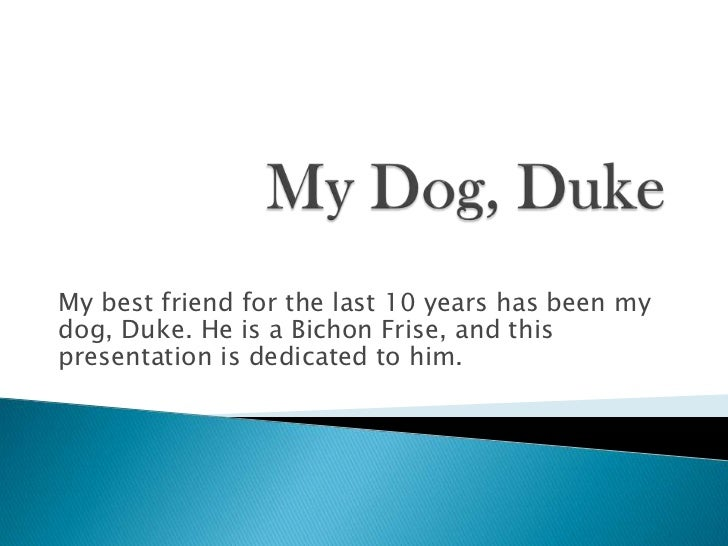 My best friend for the last 10 years has been mydog, Duke. He is a Bichon Frise, and thispresentation is dedicated to him.