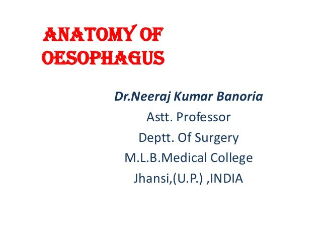 Anatomy of Oesophagus Dr.Neeraj Kumar Banoria Astt. Professor Deptt. Of Surgery M.L.B.Medical College Jhansi,(U.P.) ,INDIA
