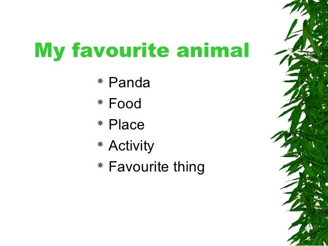 my favourite animal essay in english