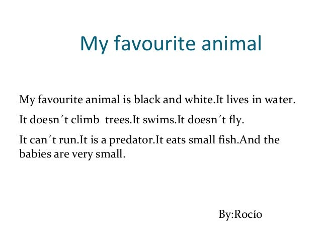Essay on my favourite animal horse