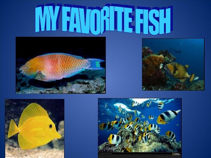 MY FAVORITE FISH