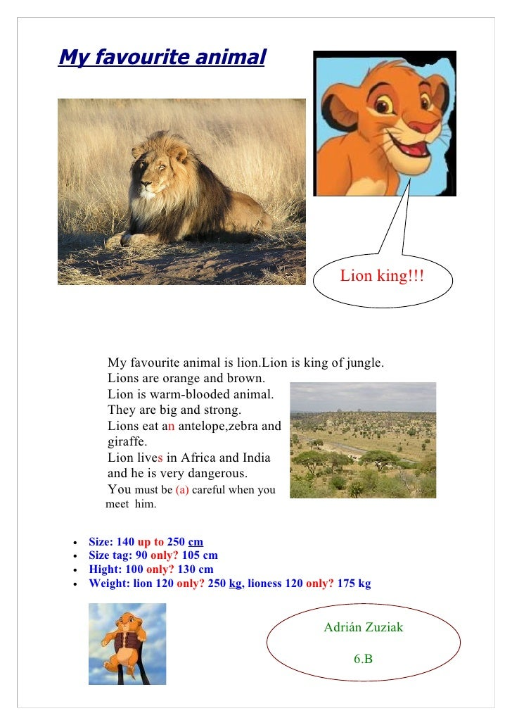My favourite animal                                                          Lion king!!!            My favourite animal i...